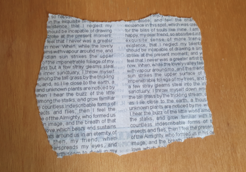 Newspaper Clipping Final Tear Back